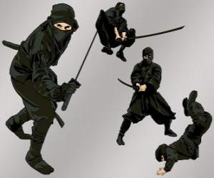 Puzle Ninja v různých polohách