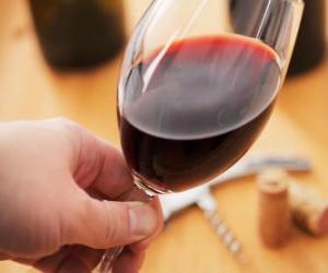 Puzle Ochutnávka vín