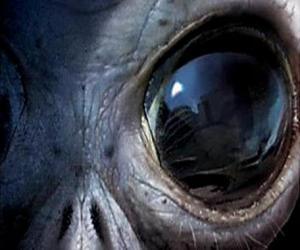 Puzle Oko cizinec