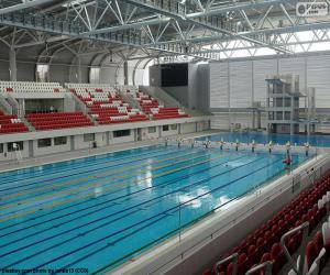 Puzle Olympijský plavecký bazén