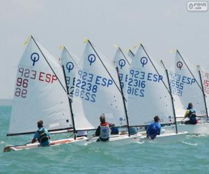 Puzle Optimist regatta