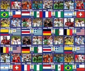Puzle Osmé finále, Brazílie 2014