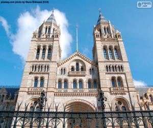 Puzle Přírodovědné muzeum, Londýn