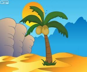 Puzle Palma, strom v oázu v poušti