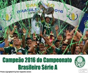 Puzle Palmeiras, mistr Brazílie 2016