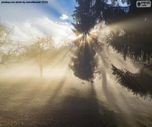 Puzle Paprsky slunce
