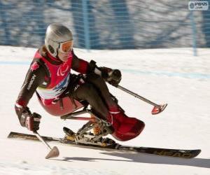 Puzle Paralympijský lyžařka ve slalomu