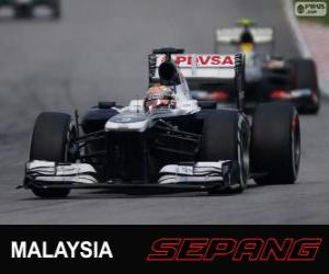 Puzle Pastor Maldonado - Williams - Sepang 2013