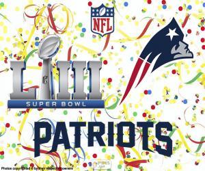 Puzle Patriots, Super Bowl 2019