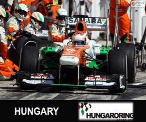 Puzle Paul di Resta - Force India - Hungaroring, 2013