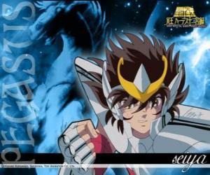 Puzle Pegasus Seija