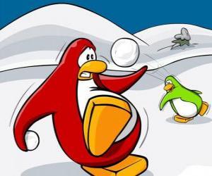 Puzle Penguins válku sněhu na Club Penguin