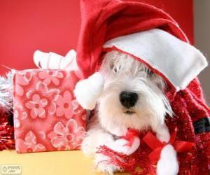 Puzle Pes s kloboukem Santa Claus a jeho dar