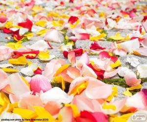 Puzle Plátky růží svatba