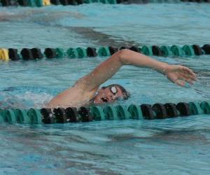 Puzle Plavec cvičí kraul v pruhu soutěže bazénu