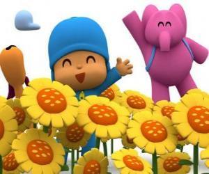 Puzle Pocoyo a jeho přátelé v poli slunečnic