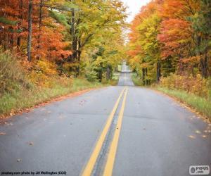 Puzle Podzimní cesta