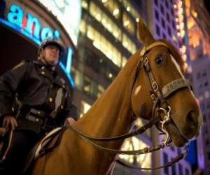 Puzle Policista na koni