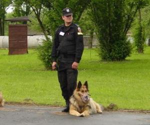 Puzle Policistu s jeho policejní pes