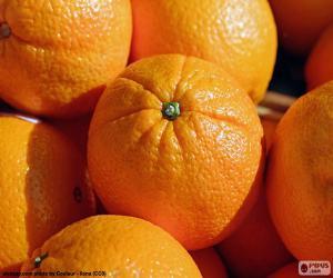 Puzle Pomeranče
