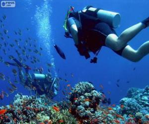 Puzle Potápění