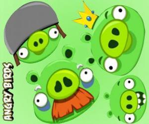 Puzle Prasata z Angry Birds
