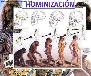 Puzle Proces hominizace