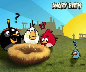 Puzle Ptáků, zjistíte, že někdo ukradl vejce z hnízda