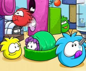 Puzle Puffles domácí zvířata v Club Penguin