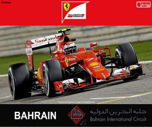 Puzle Räikkönen G.P. Bahrajn 2015