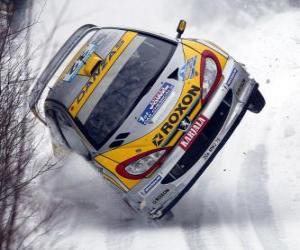 Puzle Rallye auto na sněhu