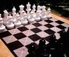 Šachovnice se umístí všechny kusy začít hru