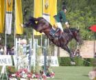 Krasojezdectví - Kůň a jezdec ve skoku cvičení