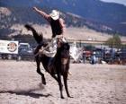 Rodeo - jezdec v sedle bronc soutěže, divoká jízda na koni