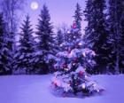 Vánoční stromky v zasněžené krajině se Měsíc na obloze