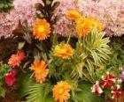 Smíšené květiny