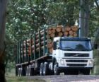 Kamionová doprava kulatiny