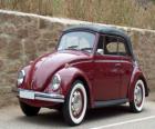 Classic car - Volkswagen Garbus