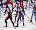 Biatlon v zimní sport kombinování cross-country lyžování sportovní střelby.