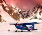 Cessna 185 na sněhu