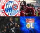 Liga mistrů UEFA semifinále 2009-10, FC Bayern München - Olympique Lyonnais