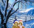 dvou medvídcích velmi teplý v krajině Vánoce