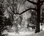 Vánoce v parku