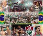 Fluminense fotbalový klub šampion v roce 2010 brazilský šampionát