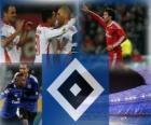 Hamburg SV, německý fotbalový tým