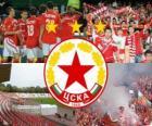 CSKA Sofia, bulharský fotbalový tým