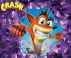 Crash Bandicoot, protagonista videohry Crash Bandicoot