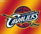 Logo Cleveland Cavaliers, NBA tým. Centrální Divize, Východní konference