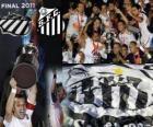 Copa Libertadores 2011 mistr FC Santos