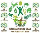 2011 Mezinárodní rok lesů